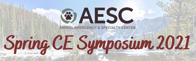2021 Spring CE Symposium